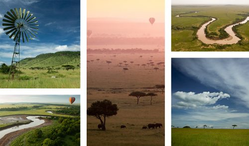 Tall grass, flowing rivers and hot air balloons; iconic of the Mara at this time of year