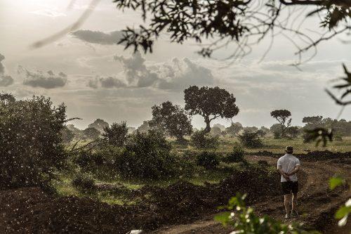 Steve Mitchell walks in the rain on the Angama Mara property