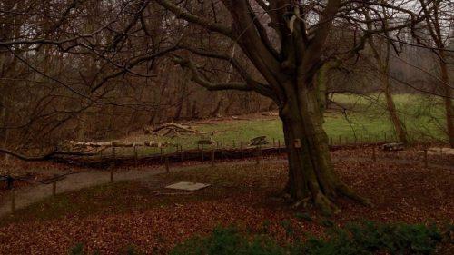 Blixen's lonely grave