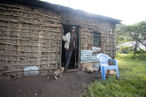 A nearby homestead where 6 dogs and 4 cats were vaccinated