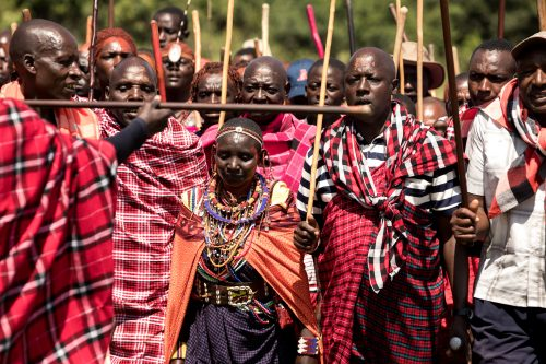 Maasai warriors presenting themselves and their cows to the elders