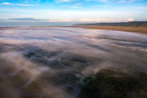 A blanket of fog gently coats the Mara Triangle
