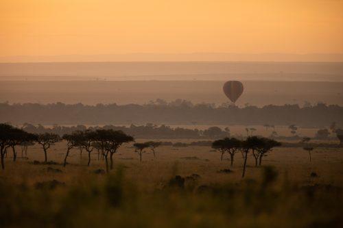 A hot air balloon floats effortlessly along the Mara River