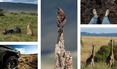 Adam explores every part of the Mara Triangle and delights in whatever he can find