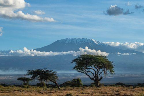 Kilimanjaro mesmerizes