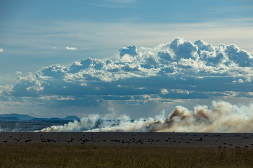 A fire smouldering away just to the south of the Mara, in the Serengeti