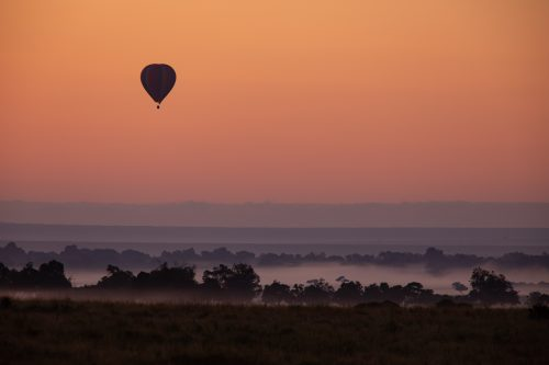 The welcome sight of hot-air balloons above the Mara