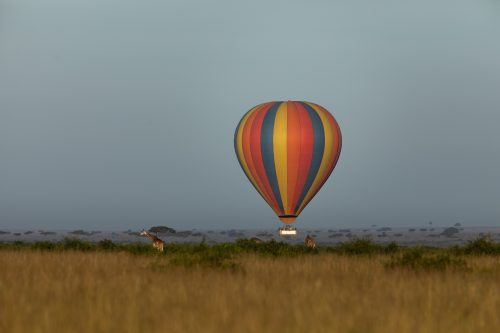 Above: Celebrating the return of the balloons over the Mara