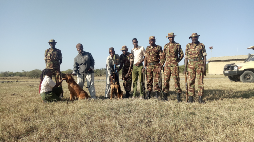 Sophie and Alice learn about tracking down poachers with a canine unit