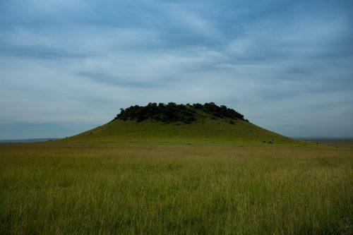 Myles Turner Hill taken in January 2021