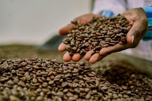 The roastery is actually the birthplace of several other well-known coffee brands