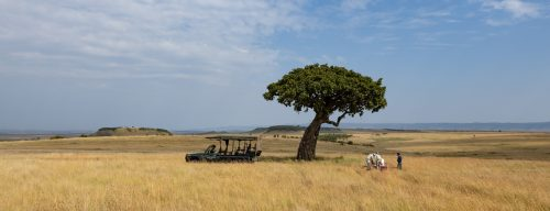 Above: Enjoying the quiet moments of the Mara