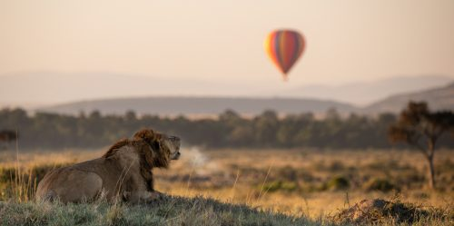 Above: Eric captures the smell, sound and feel of early mornings in the Mara