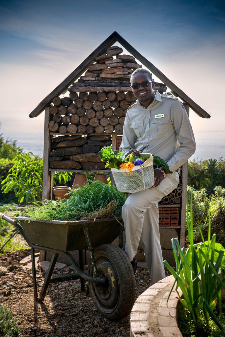 Angama Mara Shamba Keeper Willie
