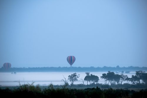 Balloons floating above the early morning mist