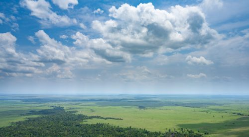 Above: The Mara has once again proved its beauty and this time from the air