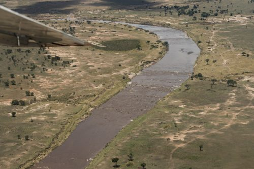 The Mara River in Tanzania flows both wider and straighter